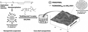 Multifunctional amphiphilic nanoparticles featuring (bio)degradable core