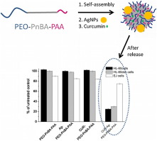 Multifunctional block copolymer nanocarriers for co-delivery of silver nanoparticles