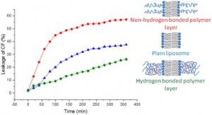 Novel polyglycidol-lipid conjugates create a stabilizing hydrogen