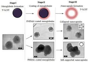 nano-sized poly(methoxydiethyleneglycol methacrylate) colloidal templates