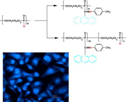polyphosphoesters bearing anthracene-derived aminophosphonate units